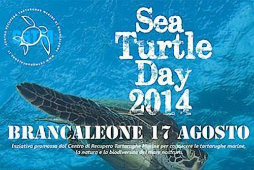Sea Turtle Day 2014, Francesca Prestia a Brancaleone (RC)